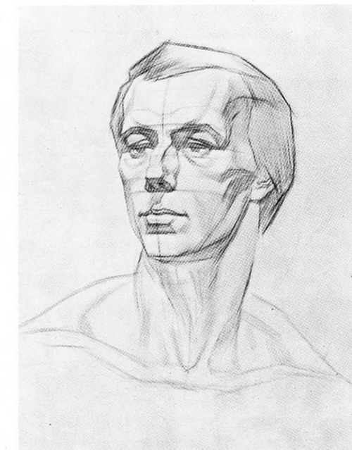 стадии рисования головы